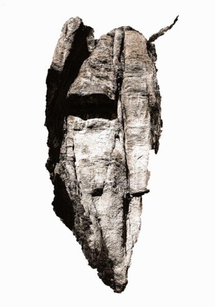 Francesca Catellani, Spiriti di pietra, 2021, stampa su tela, dettaglio installazione, cm 100x70